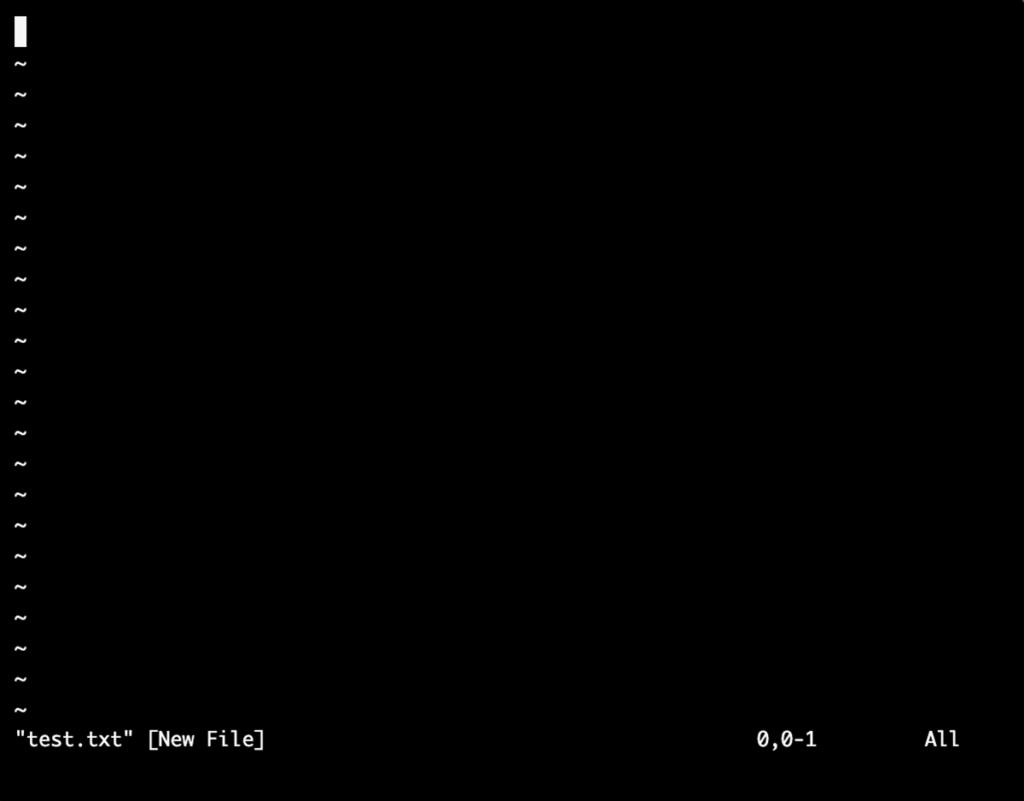 viエディタのファイル新規作成時の画面